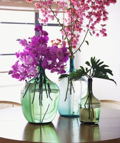 orchids in water