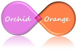 orchid_orange