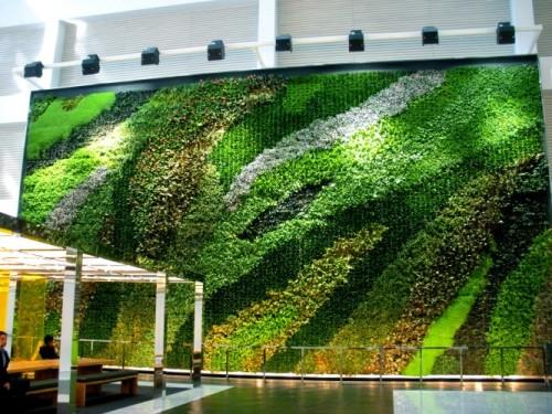A 32' x 60' (1,920 sf) Interior Living Wall in a corporate atrium.