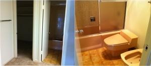 Master Bath shower/closet before: