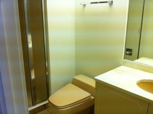 Office Bath Before: